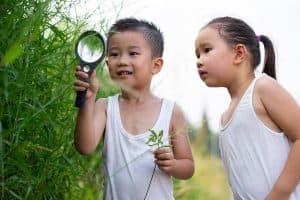 Dos niños buscan curiosos algún insecto entre los arbustos de un prado verde.